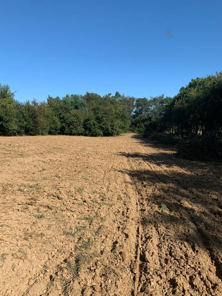 Freshly plowed fields